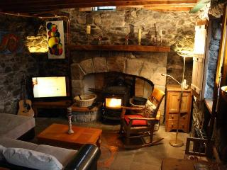 Beautiful 2 bedroom Cottage in Foxford with Internet Access - Foxford vacation rentals