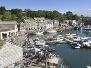 Lovely 4 bedroom House in Padstow with Internet Access - Padstow vacation rentals