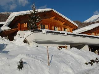 Luxury Klosters Chalet, Spectacular Views.5 mins walk to lifts. Private Sauna - Klosters vacation rentals