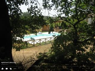 Adorable 9 bedroom Finca in Lamporecchio with Internet Access - Lamporecchio vacation rentals