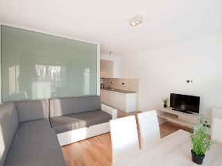 Cozy 1 bedroom Apartment in Zywiec with Internet Access - Zywiec vacation rentals