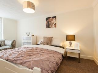 Charming 3 bed 2.5 bath in Central London - London vacation rentals