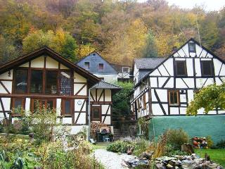 Beautiful 3 bedroom Sankt Goarshausen Cottage with Balcony - Sankt Goarshausen vacation rentals