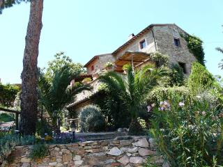 11 bedroom Farmhouse Barn with Internet Access in Suvereto - Suvereto vacation rentals