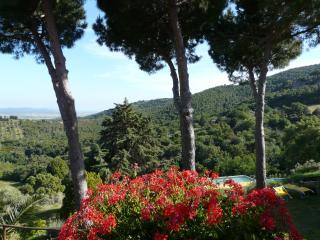 Le Foreste - Suvereto vacation rentals