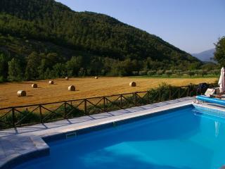 Lovely Condo with Internet Access and Grill - Pierantonio vacation rentals