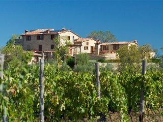 Castello di Bucignano  App.  Le STELLE - Montecastelli Pisano vacation rentals