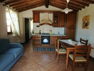 Castello di Bucignano - App Barbie - Montecastelli Pisano vacation rentals