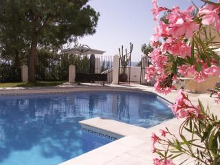 Marina Playa - La Herradura vacation rentals