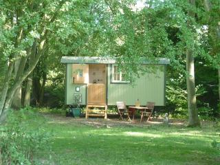 Romantic 1 bedroom Shepherds hut in Ledbury - Ledbury vacation rentals