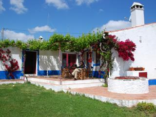 Charming 6 bedroom Cottage in Beja with Balcony - Beja vacation rentals