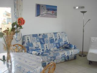 Nice Condo with Short Breaks Allowed and Long Term Rentals Allowed - Les Issambres vacation rentals