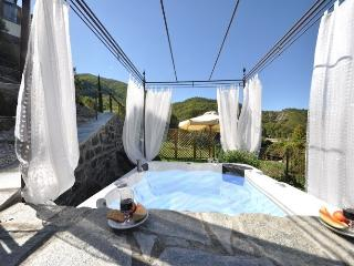 Lovely villa in Tuscany countryside with jacuzzi - San Godenzo vacation rentals
