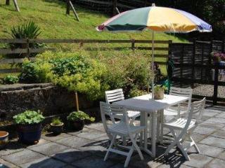 1 bedroom Cottage with Internet Access in Llanwrda - Llanwrda vacation rentals