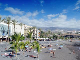 Beach Luxury aparatment -  MERLIN II - Playa San Juan vacation rentals
