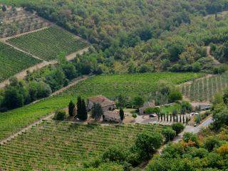 Podere Val delle Corti - Radda in Chianti vacation rentals