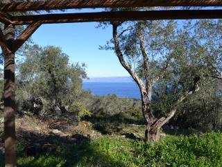 Comfortable 1 bedroom Cottage in Loggos - Loggos vacation rentals
