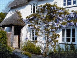 3 bedroom Cottage with Internet Access in Moretonhampstead - Moretonhampstead vacation rentals