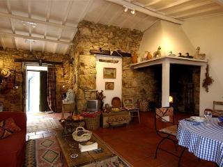 Casa da Lomba & Annex - Figueiro dos Vinhos vacation rentals