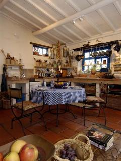 Nice 4 bedroom Figueiro dos Vinhos House with Internet Access - Figueiro dos Vinhos vacation rentals