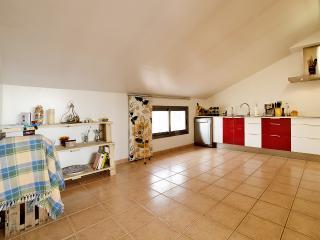 1 bedroom Condo with Internet Access in Pineda de Mar - Pineda de Mar vacation rentals