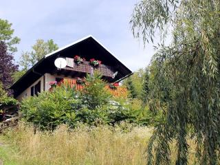 3 bedroom House with Internet Access in Kamnik - Kamnik vacation rentals