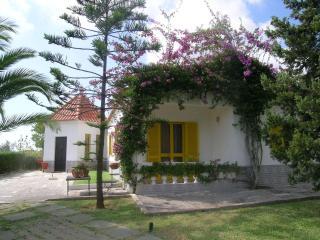 Casa das Laranjeiras - quiet - Odiaxere vacation rentals