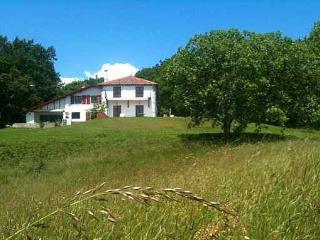 ESPELETENIA Grande ferme rénovée en pleine nature - Ciboure vacation rentals