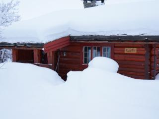 Nice 1 bedroom Venabygd Cabin with Internet Access - Venabygd vacation rentals