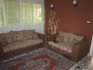 Nice Condo with A/C and Television - Cairo vacation rentals