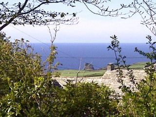 Hedgend Cottage - Tintagel vacation rentals