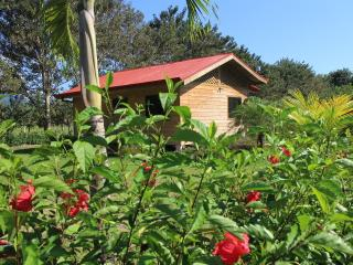 Costa Rica Holiday Home-Casa Mediterranea - Uvita vacation rentals