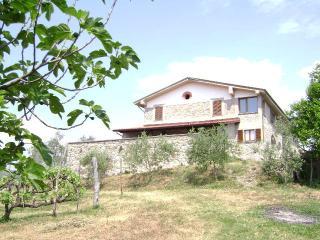 Bright 7 bedroom Villafranca in Lunigiana Townhouse with Refrigerator - Villafranca in Lunigiana vacation rentals