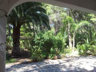 2 bedroom Villa with A/C in Castellaneta Marina - Castellaneta Marina vacation rentals