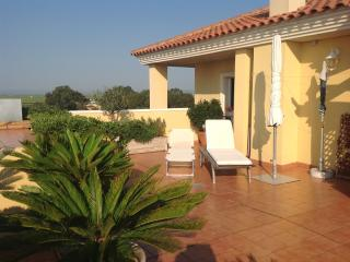 Beautiful 3 bedroom El Perello Penthouse with Garden - El Perello vacation rentals
