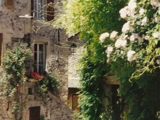 Village house, Ste Eulalie d'O - Aveyron vacation rentals