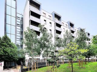 1bd 1 bath modern flat with balcony in Aldgate - London vacation rentals