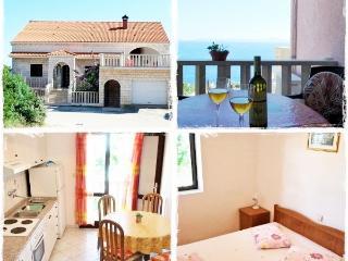 VILLA DUBRAVKA - APARTMENT WITH GOLDEN VIEW - Zavalatica vacation rentals