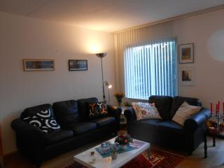 Cozy small villa edge of Amsterdam - Amstelveen vacation rentals