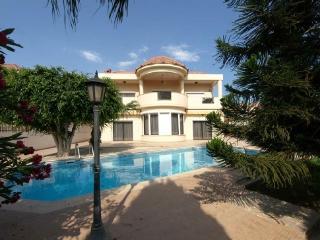 3-bdr. Villa Patatas - Limassol vacation rentals