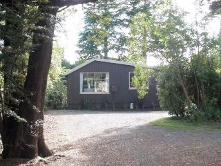 1 bedroom Cottage with A/C in Te Anau - Te Anau vacation rentals