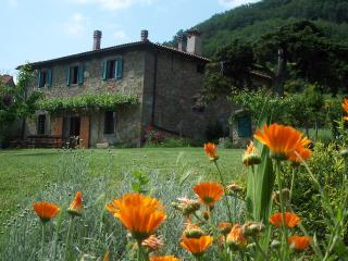 Valpiana, charming Tuscan farm house, in nature - Londa vacation rentals