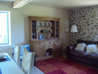 The Granary 15C watermill converted barn - Saint-Clementin vacation rentals