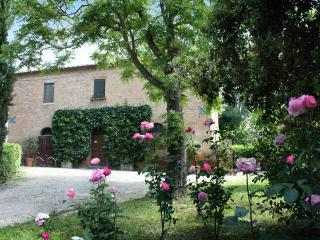 Villa near Siena with heated  pool, - Monteroni d'Arbia vacation rentals