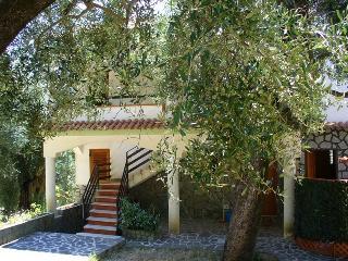 VILLA CECILIA/apartment 2 - Pisciotta vacation rentals