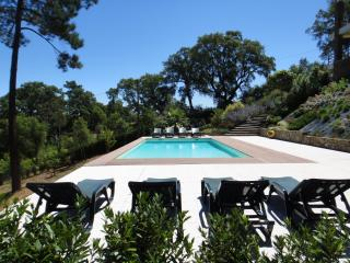 Casa Do Vale - Tomar vacation rentals