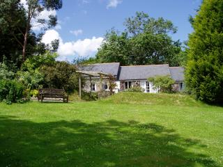 Lovely Cottage with Internet Access and Television - Pillaton vacation rentals