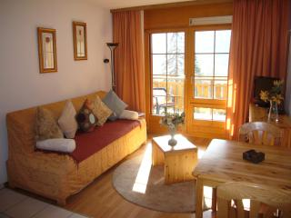 Nice Condo with Internet Access and Satellite Or Cable TV - Leukerbad vacation rentals