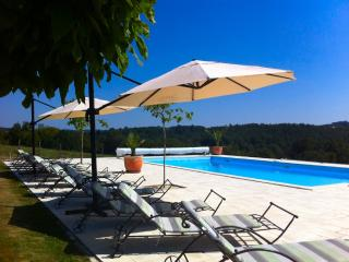 Spacious 7 bedroom Farmhouse Barn in Perigueux - Perigueux vacation rentals