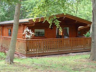 Beautiful Cabin with Internet Access and Tennis Court - Louth vacation rentals